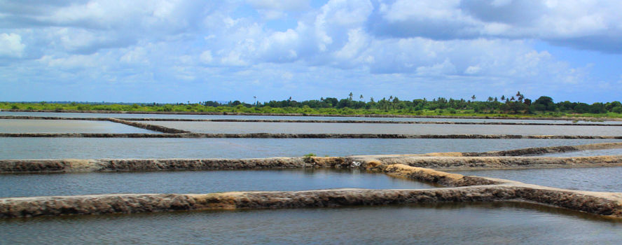 SALT PRODUCTION PLANT, MOZAMBIQUE